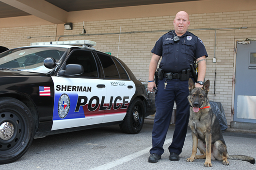 Police officer and dog standing next to a Sherman police car